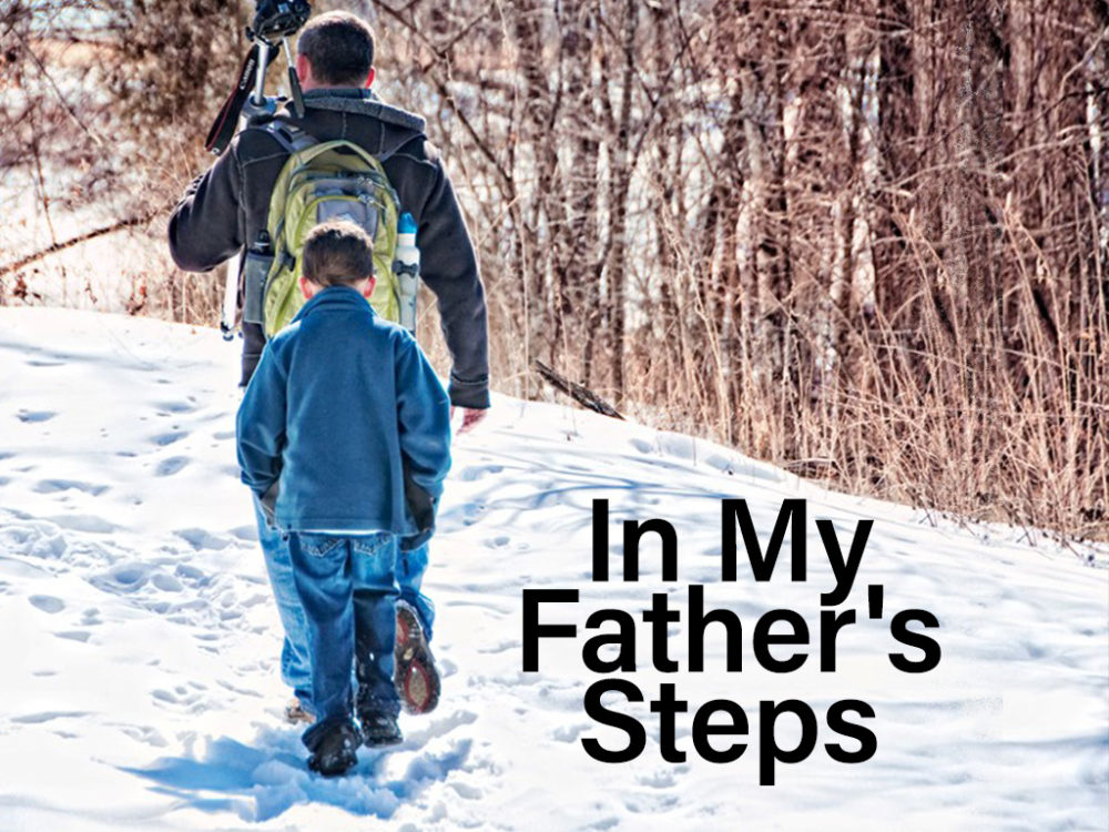 In My Father\'s Steps Image